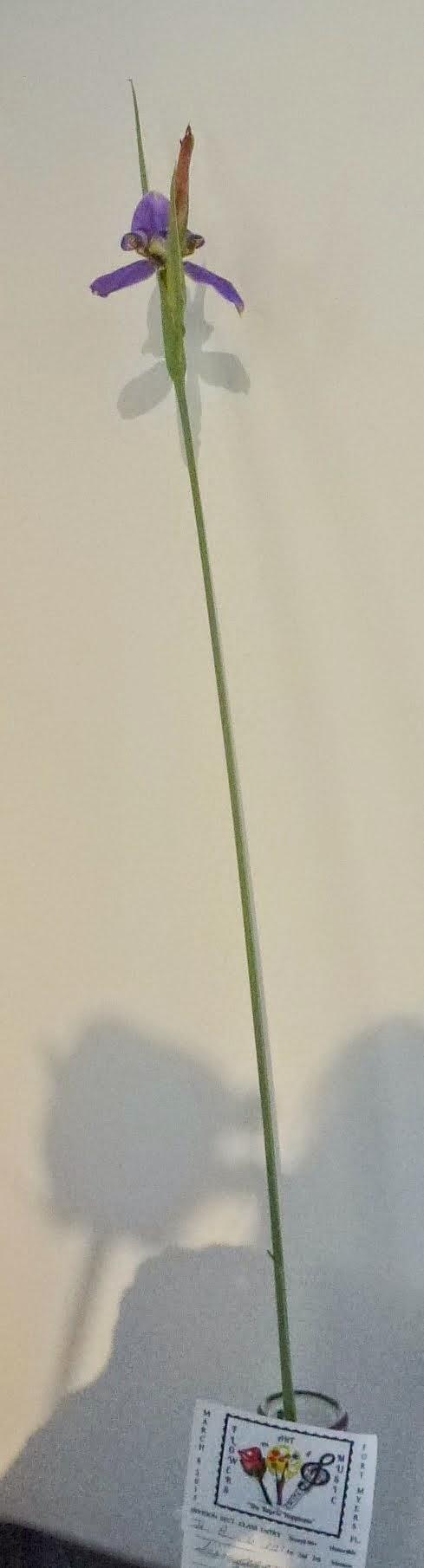 P1140622.JPG