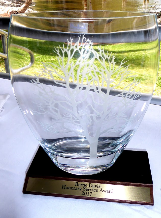 Berne Davis Service Award