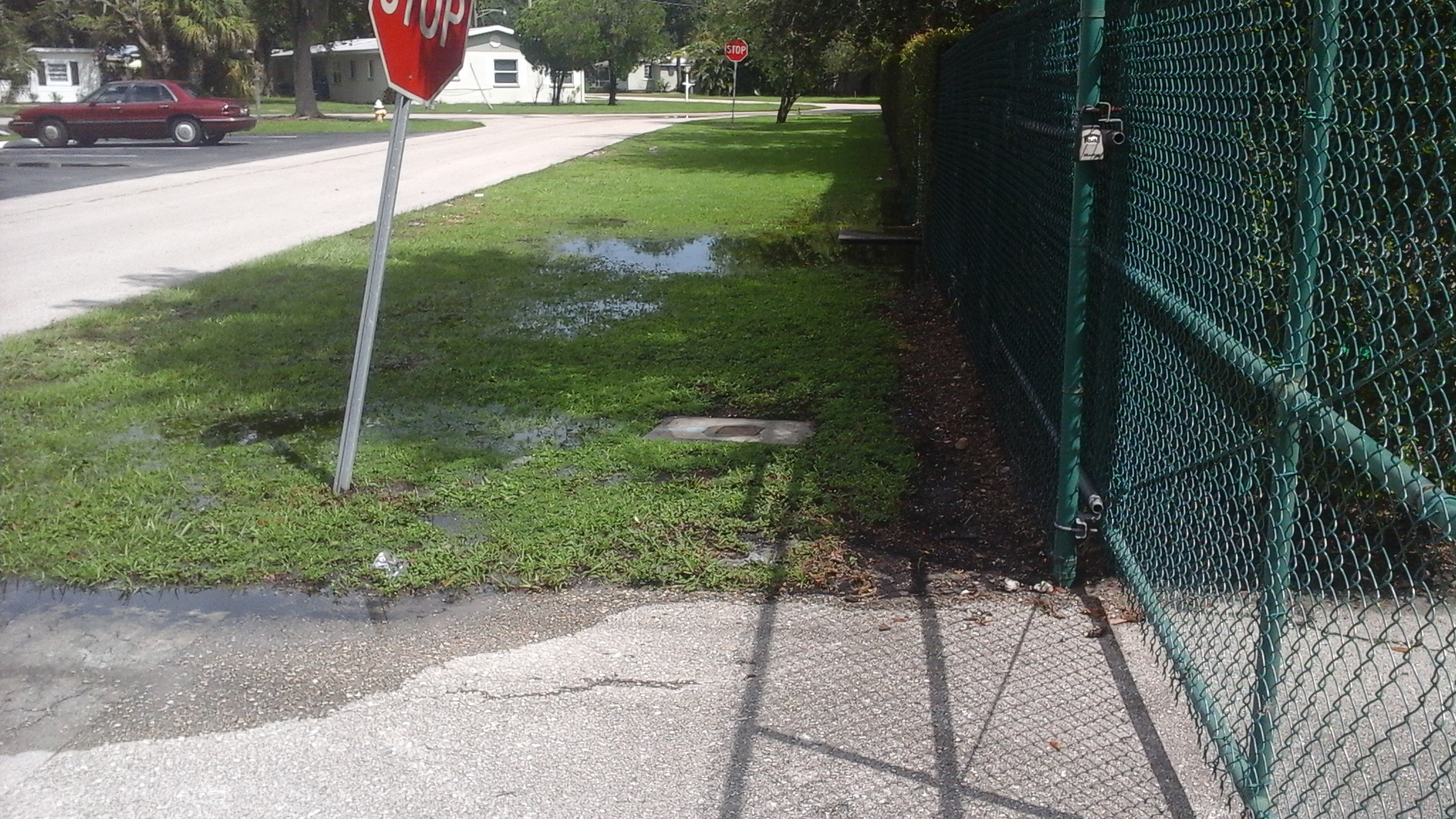 Ground water after Harvey rains.