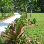 Walkway at the Garden Council